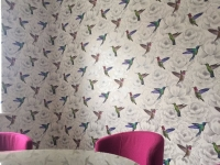 feature wallpaper,hull