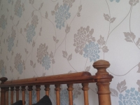feature wallpaper, hull